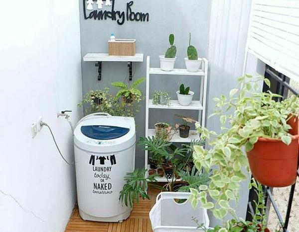 ruang cuci dengan tanaman hias