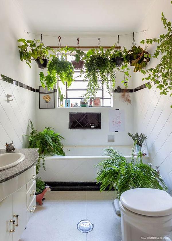 kamar mandi dengan tanaman gantung