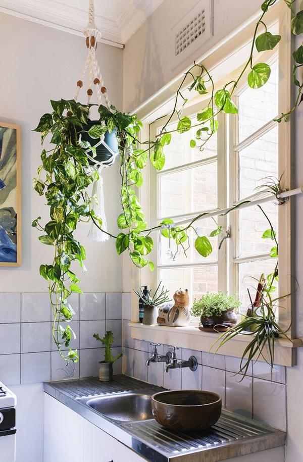 indoor-garden-untuk-dekorasi-dapur