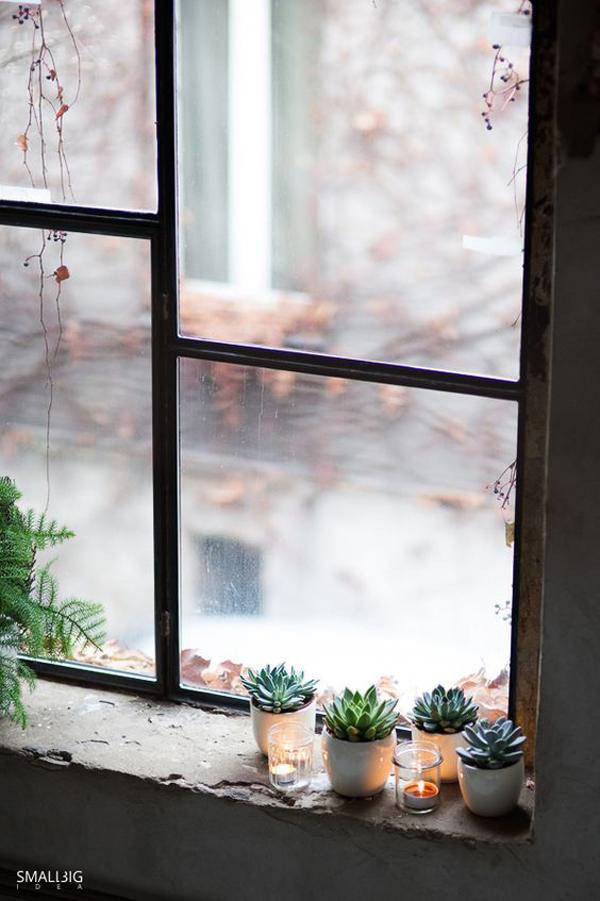 pot-kaktus-mini-dengan-pencahayaan-di-jendela