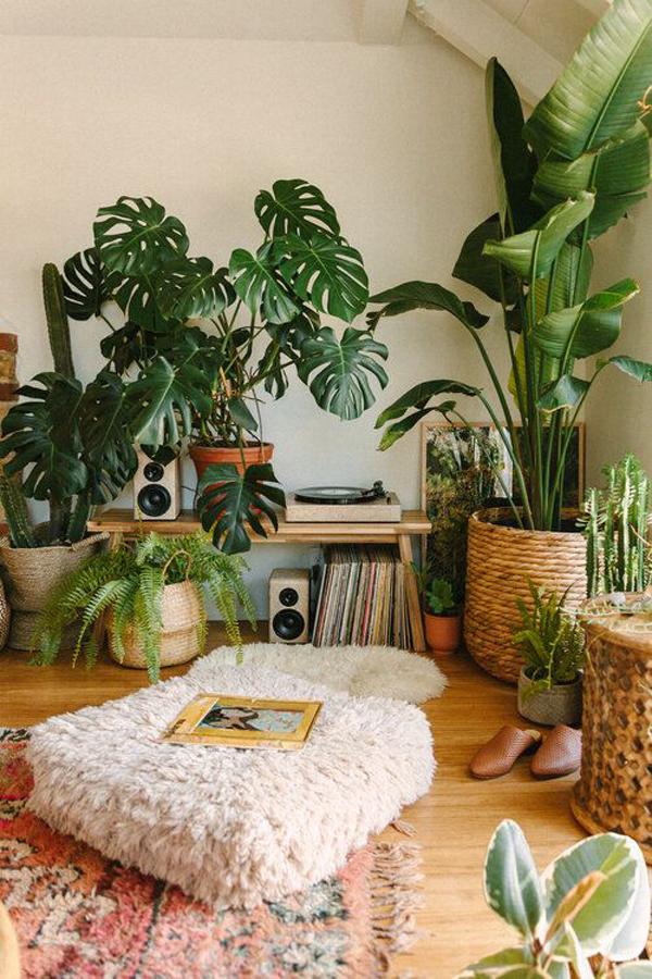dekorasi-tanaman-hias-di-sudut-kamar