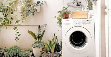 ide-ruang-cuci-minimalis-dengan-tanaman-hias
