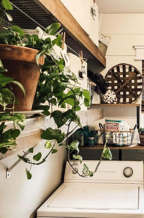 ide-ruang-laundri-bergaya-vintage-dengan-tanaman-hias