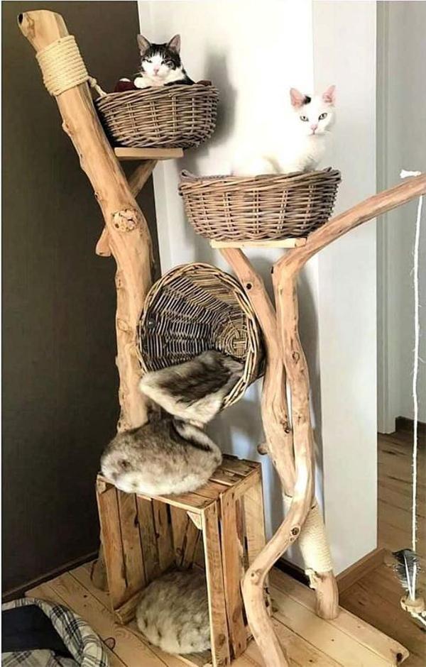 area-bermain-kucing-dengan-pohon-DIY