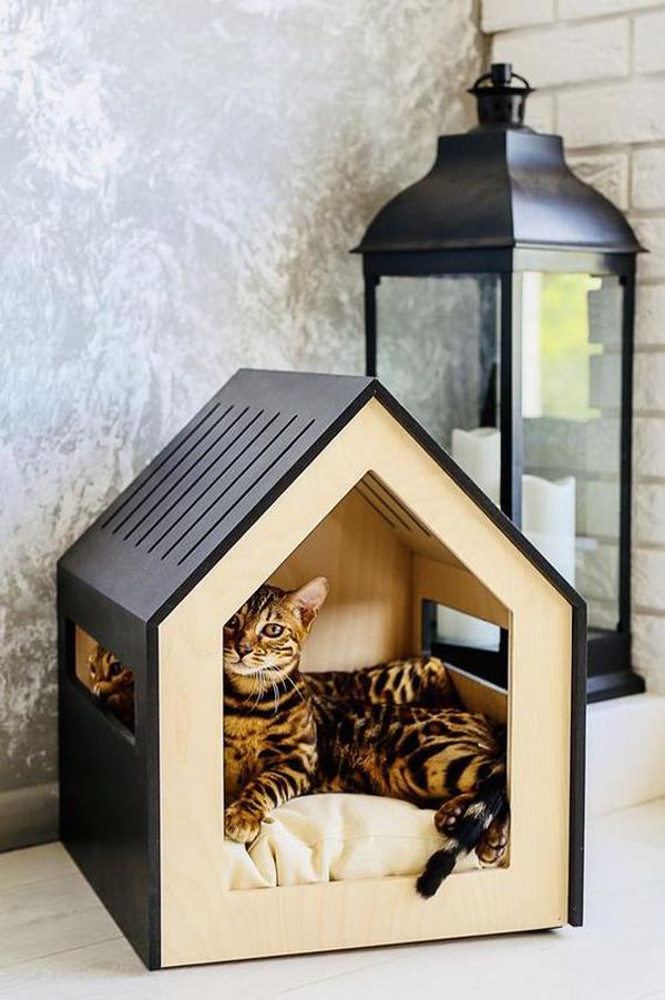 desain-rumah-kucing-simpel-dan-moderen