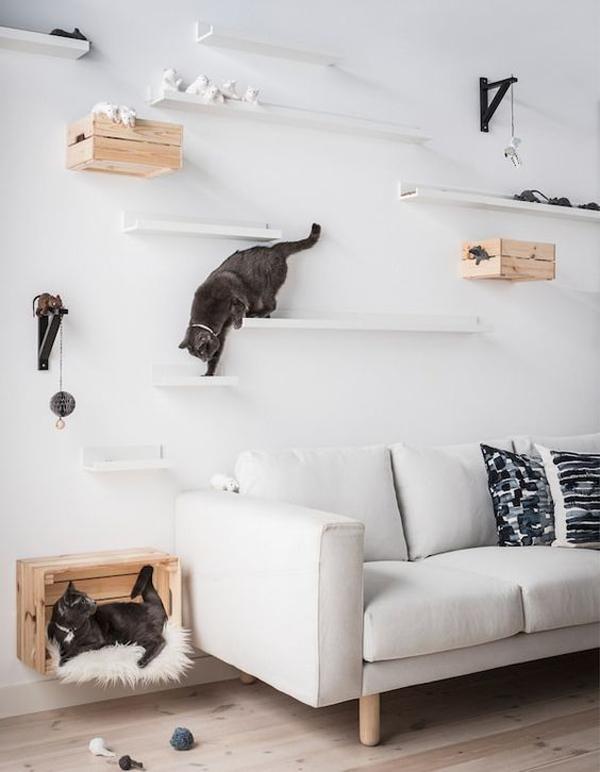 dinding-kucing-DIY-di-ruang-tamu