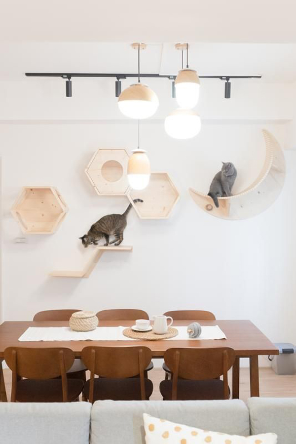 hiasan-dinding-kayu-unik-dengan-area-bermain-kucing