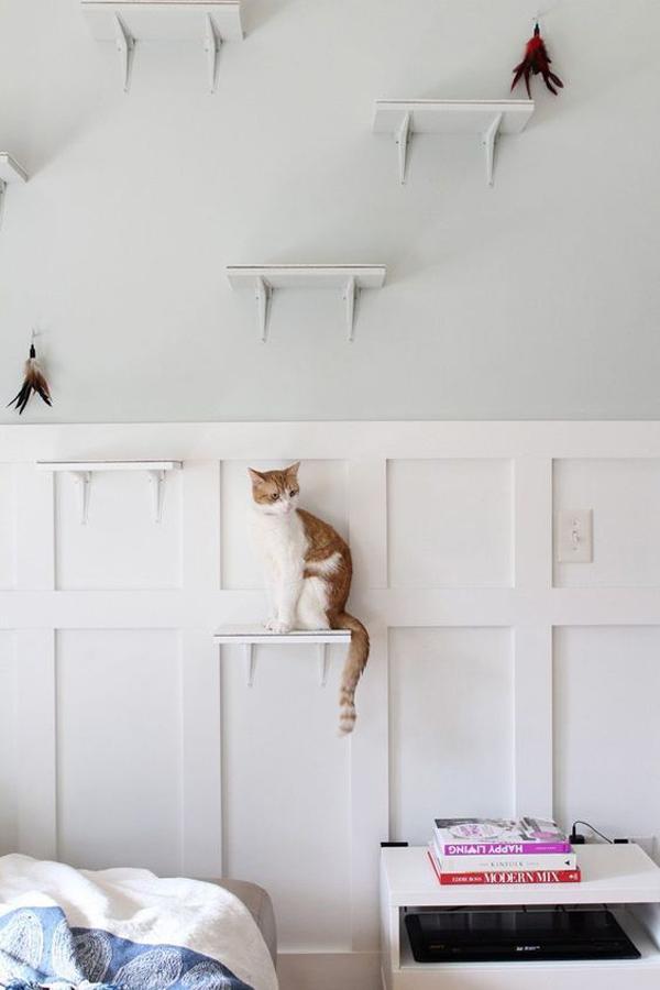 ide-dinding-dan-rak-kucing-minimalis