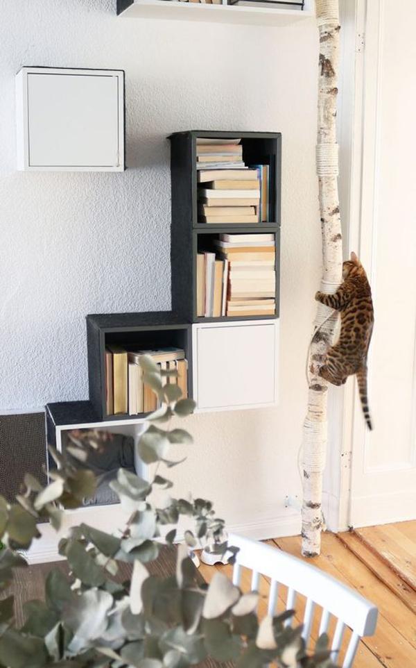 ide-pohon-kucing-dengan-rak-buku