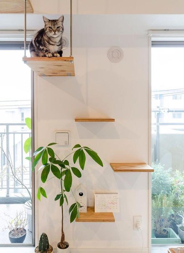 ide-rak-dinding-sekaligus-ruang-bermain-kucing
