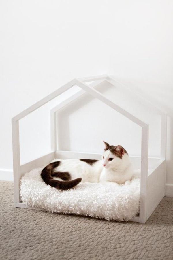 ide-rumah-kucing-minimalis