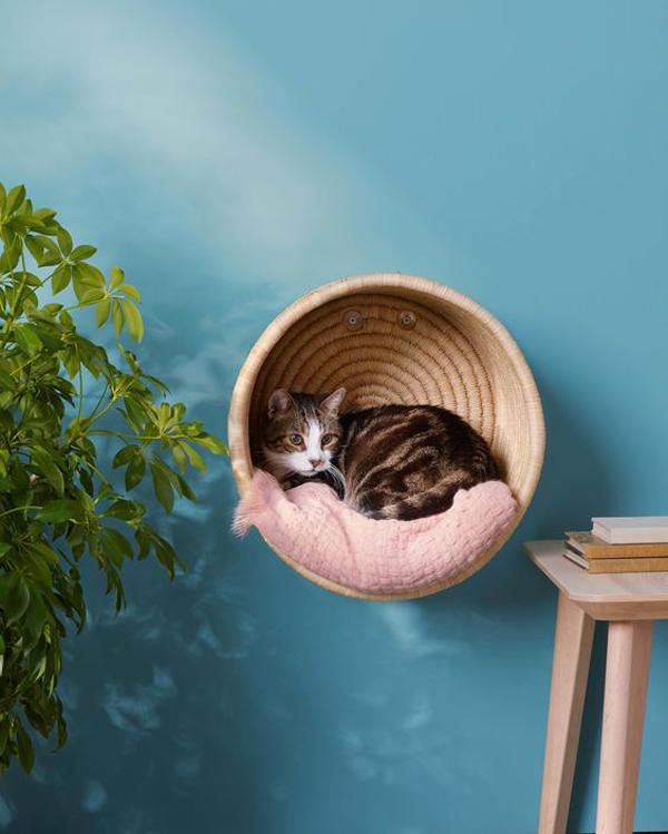 keranjang-kucing-DIY-di-dinding