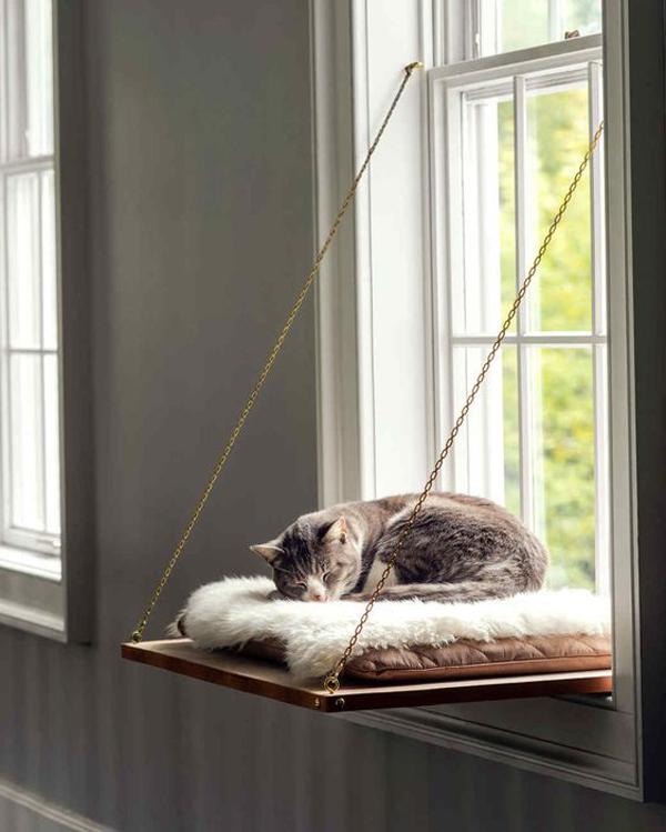 tempat-tidur-kucing-unik-di-jendela