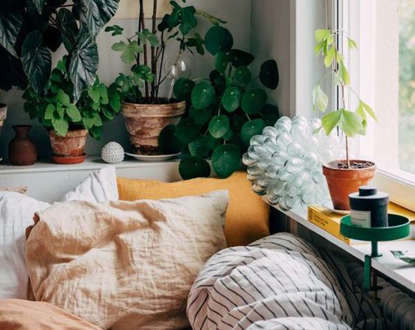 desain-kamar-tidur-dengan-tanaman