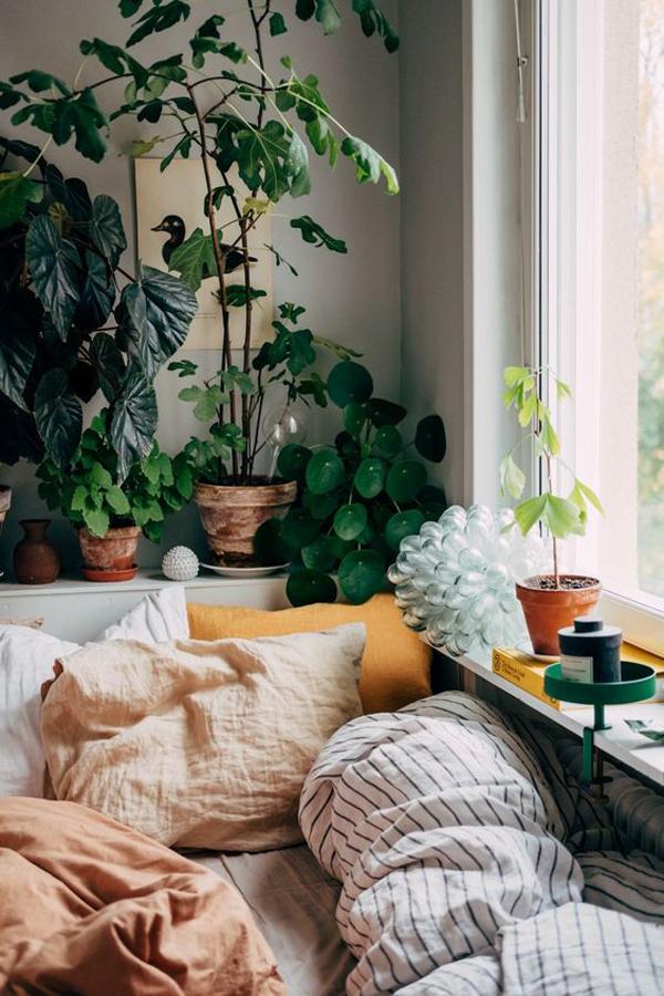 ide-kamar-tidur-dengan-dekorasi-tanaman-alami