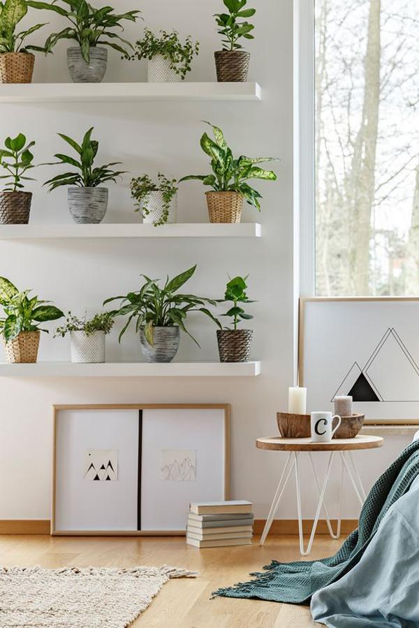 rak-tanaman-bertingkat-untuk-kamar-tidur