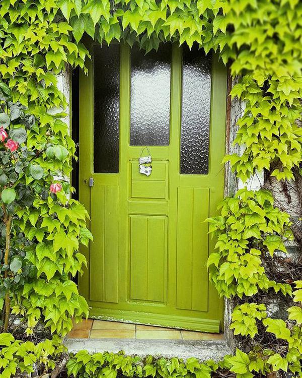 pintu-hijau-dengan-taman-merambat-alami