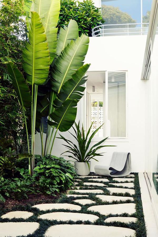 dekorasi-taman-tropis-modern-untuk-area-terbatas