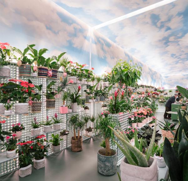 dekorasi-toko-bunga-dengan-rak-display-unik