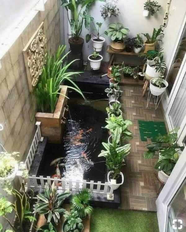 desain-kolam-ikan-di-depan-teras