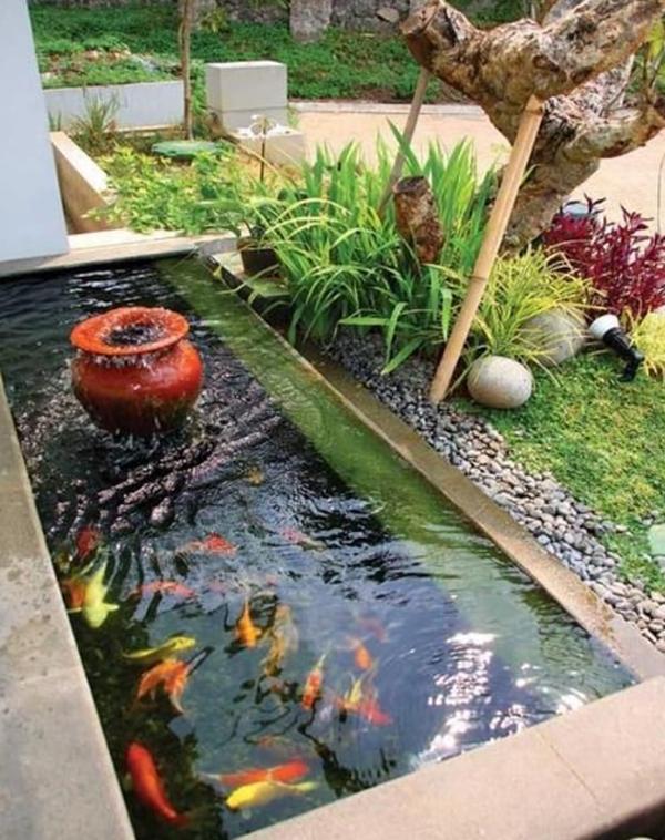 desain-kolam-ikan-kecil-bernuansa-alami