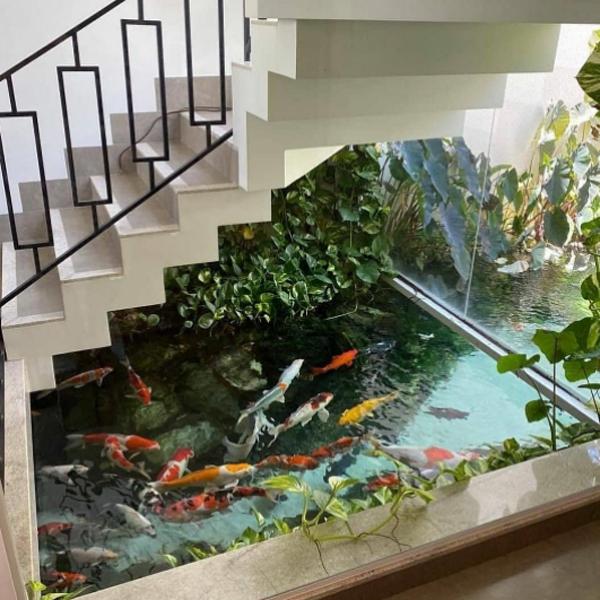 desain-kolam-ikan-unik-di-bawah-tangga-rumah