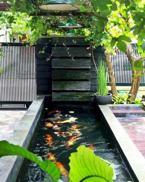 ide-kolam-ikan-rumah-dengan-tanaman-hias