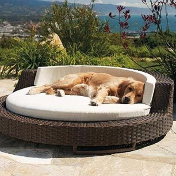 desain-tempat-tidur-anjing-bentuk-anyaman-bulat