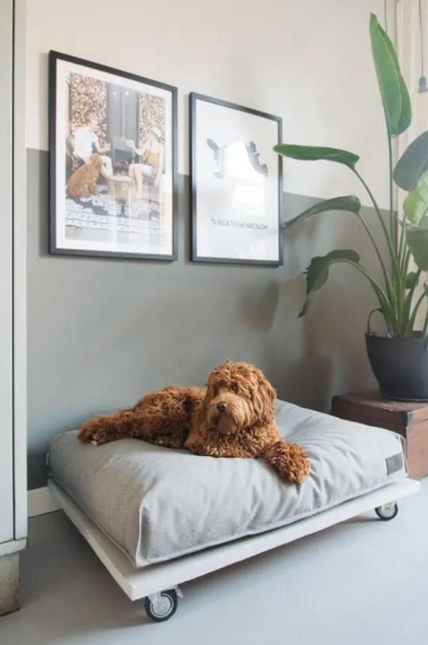 desain-tempat-tidur-anjing-dengan-roda