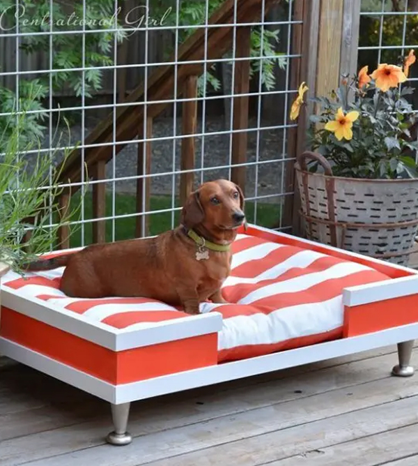 desain-tempat-tidur-anjing-merah-putih