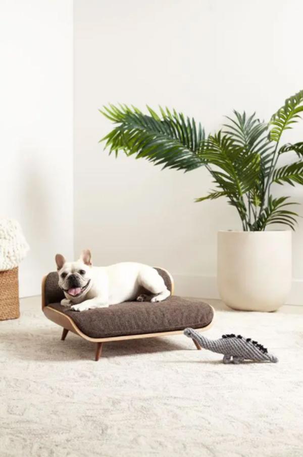 desain-tempat-tidur-anjing-modern