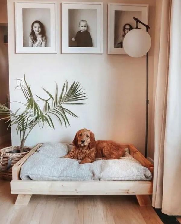 ide-tempat-tdur-kayu-untuk-anjing