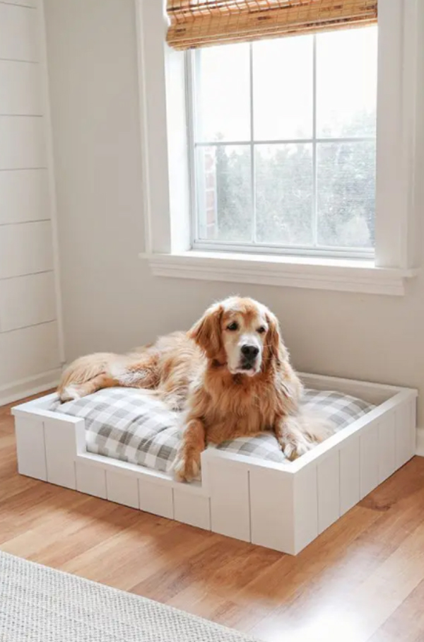 tempat-tidur-anjing-dalam-ruangan-bergaya-vintage