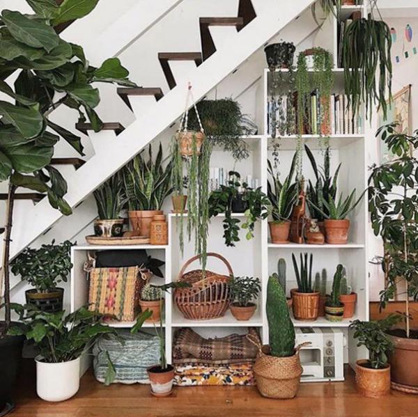 dekorasi-tanaman-hias-di-bawah-tangga