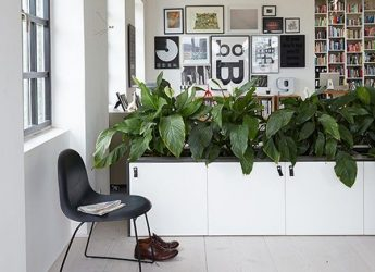 desain-sekat-ruangan-alami