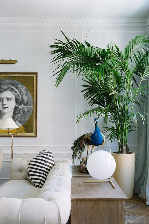 desain-ruang-tamu-klasik-dengan-tanaman-palem-hias