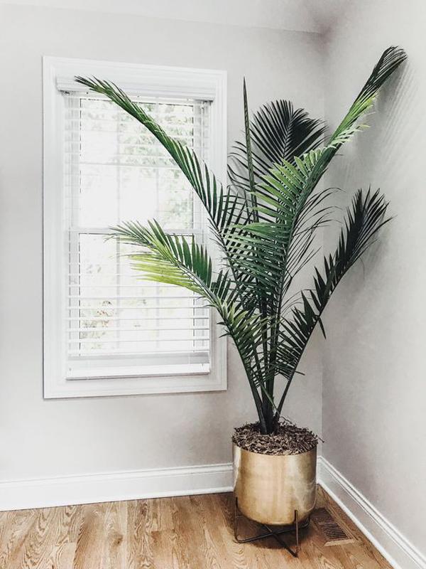 ide-tanaman-palem-mewah-dan-minimalis-dengan-pot-berwarna-emas