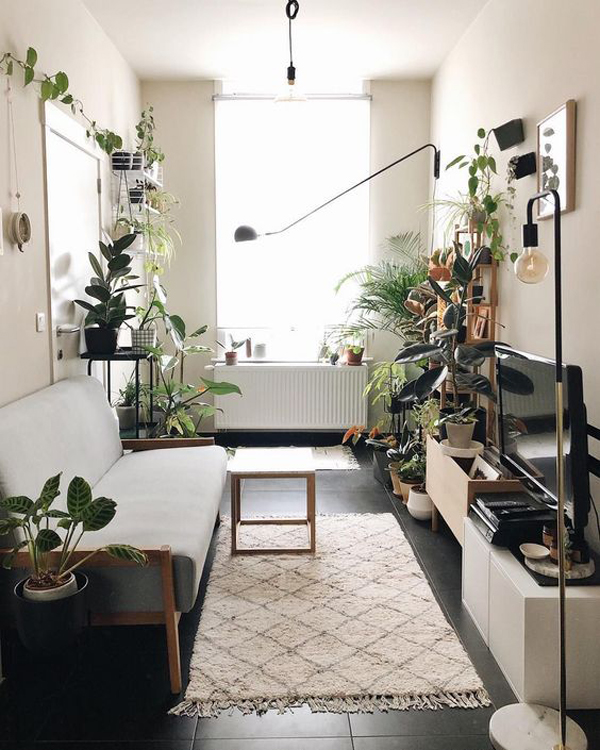 ruang-tamu-modern-dengan-tanaman-hias